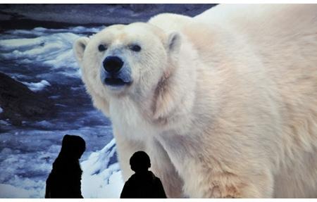 20100112sony_bld.jpg ソニービル・沖縄美ら海水族館や旭山動物園の映像作品