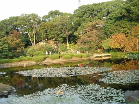 higasi013.JPG 皇居東御苑 二の丸庭園