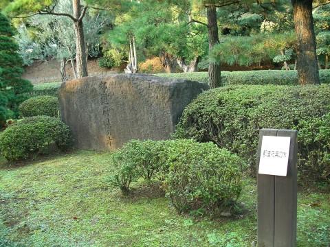 higasi018.JPG 皇居東御苑 都道府県の木