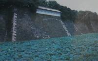 koukyo095a.JPG 皇居東御苑 富士見多聞 蓮池側